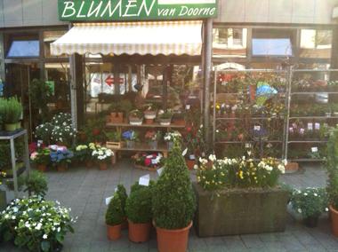pulheim